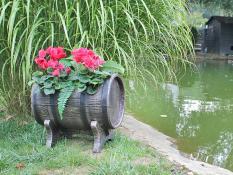Gėlių vazonai SALSA S