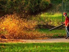 Elektrinis lapų siurblys-pūstuvas
